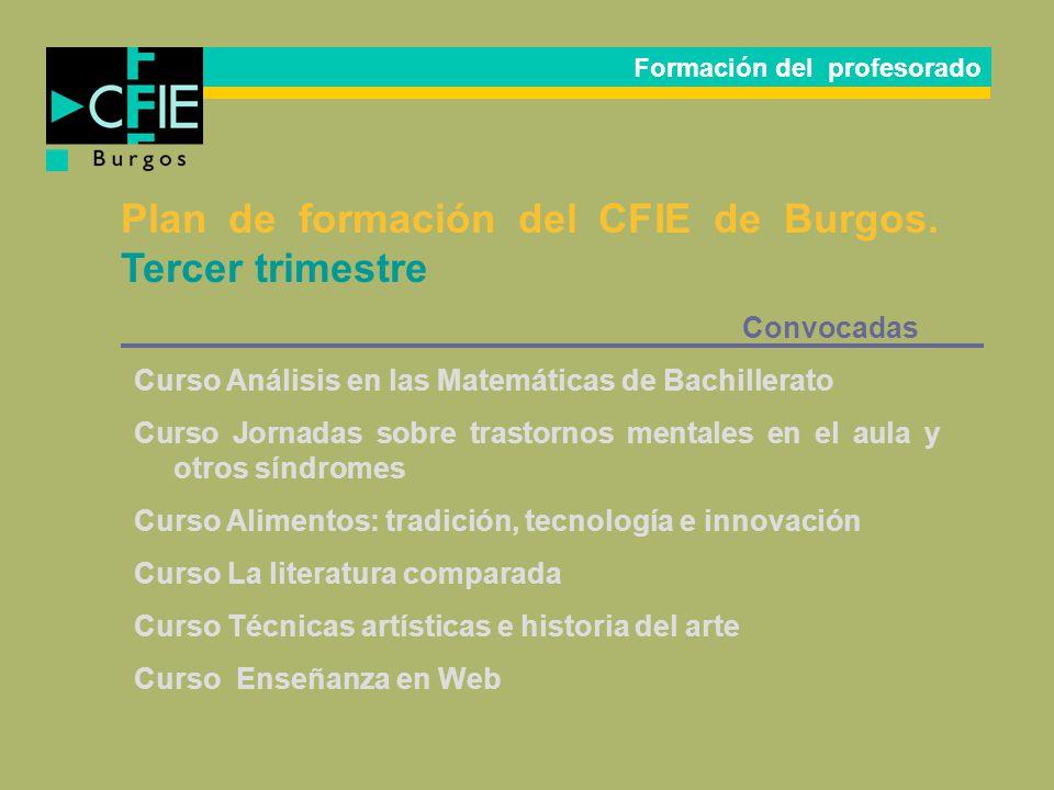 Plan de formación del CFIE de Burgos. Tercer trimestre