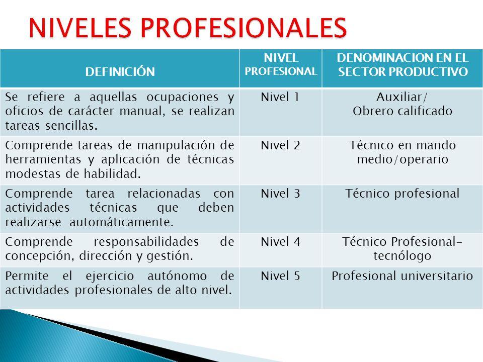 NIVELES PROFESIONALES