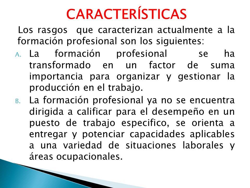 CARACTERÍSTICAS Los rasgos que caracterizan actualmente a la formación profesional son los siguientes:
