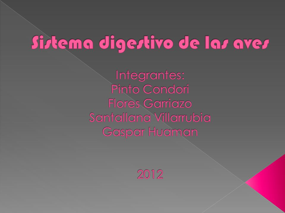 Sistema digestivo de las aves Integrantes: Pinto Condori Flores Garriazo Santallana Villarrubia Gaspar Huaman 2012