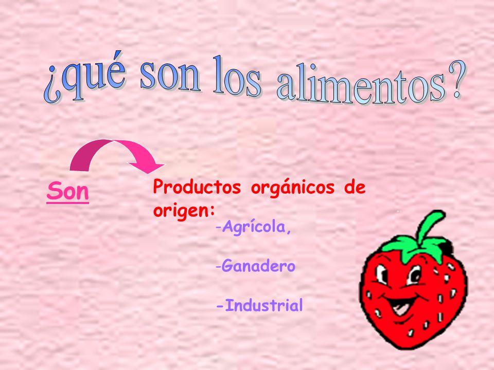 ¿qué son los alimentos Son Productos orgánicos de origen: Agrícola,