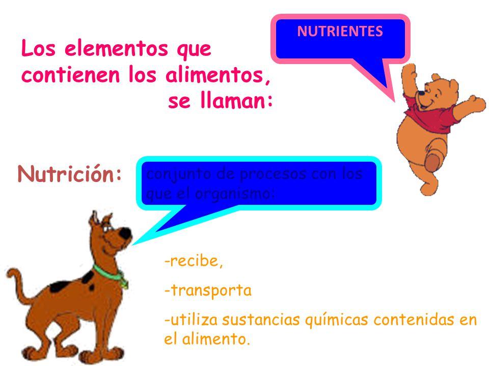 Los elementos que contienen los alimentos, se llaman: