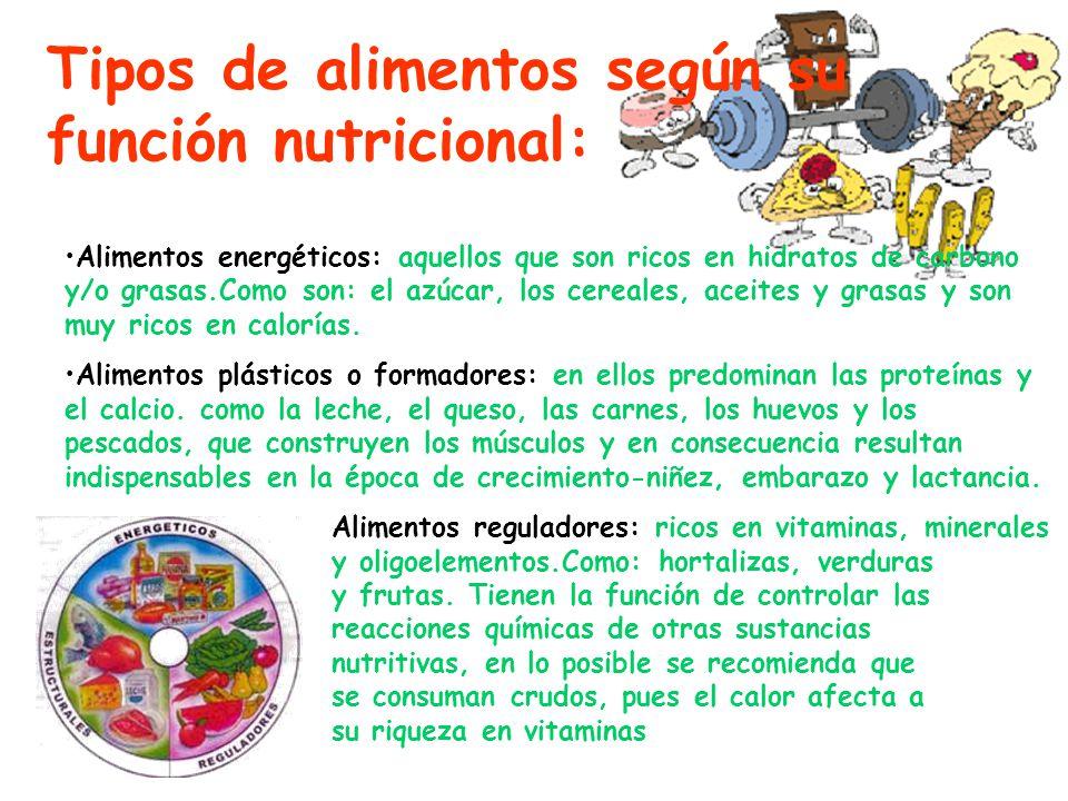 Tipos de alimentos según su función nutricional: