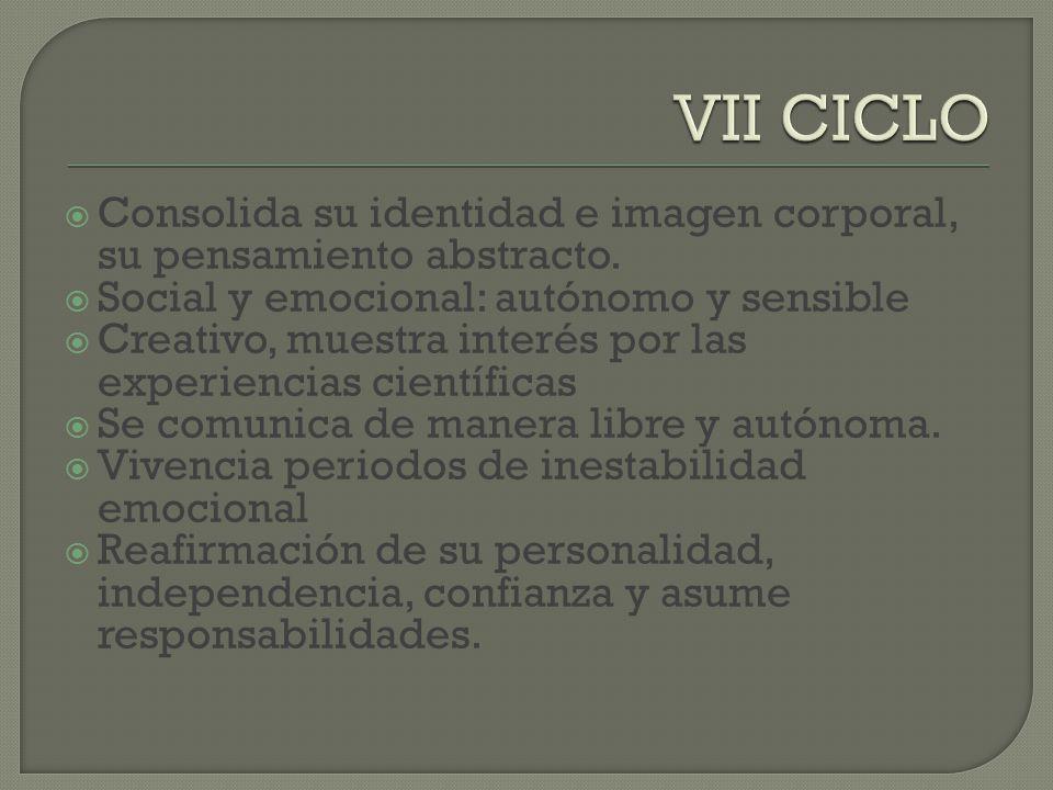 VII CICLO Consolida su identidad e imagen corporal, su pensamiento abstracto. Social y emocional: autónomo y sensible.