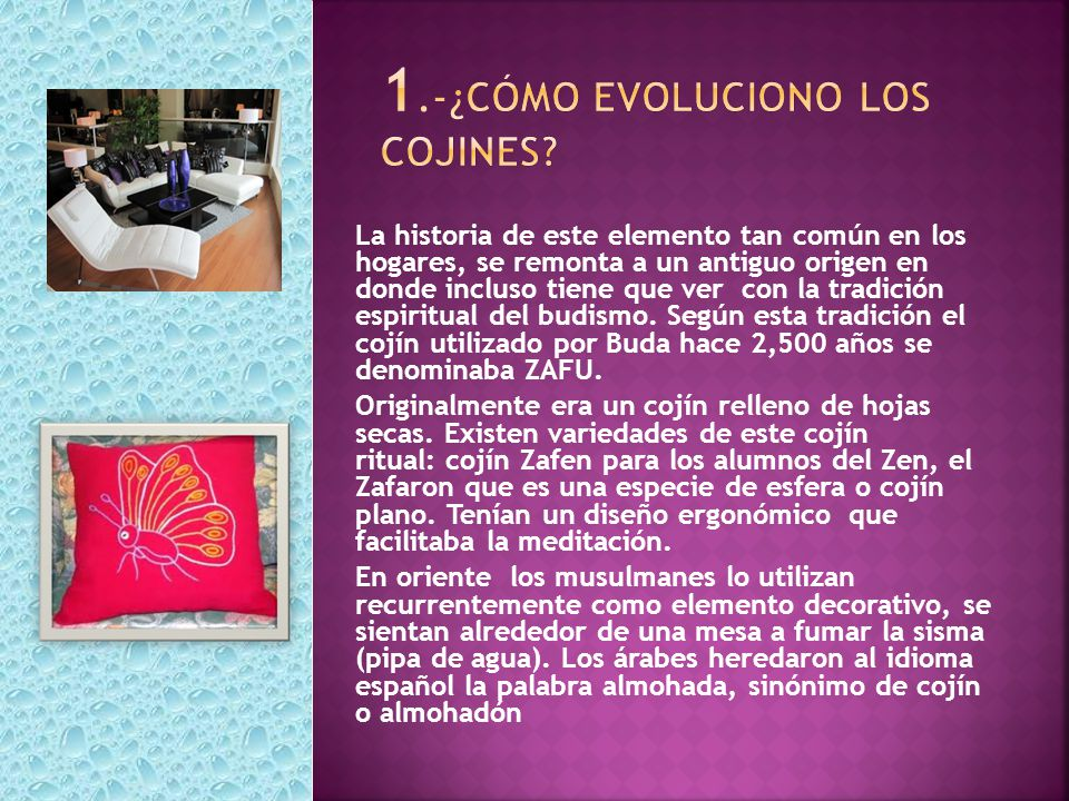 1.-¿Cómo evoluciono los cojines