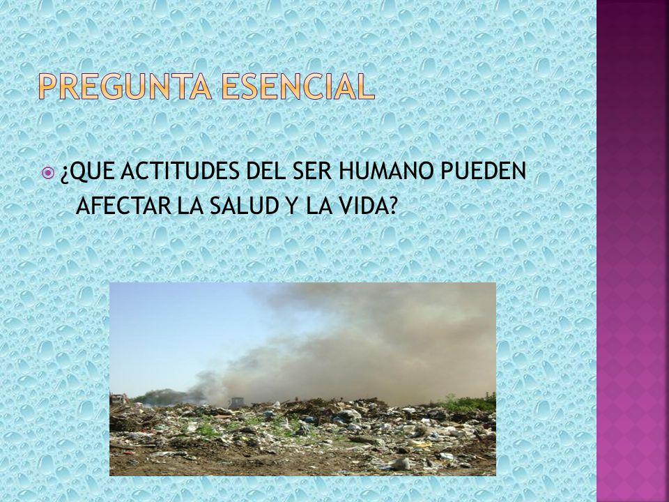 PREGUNTA ESENCIAL ¿QUE ACTITUDES DEL SER HUMANO PUEDEN