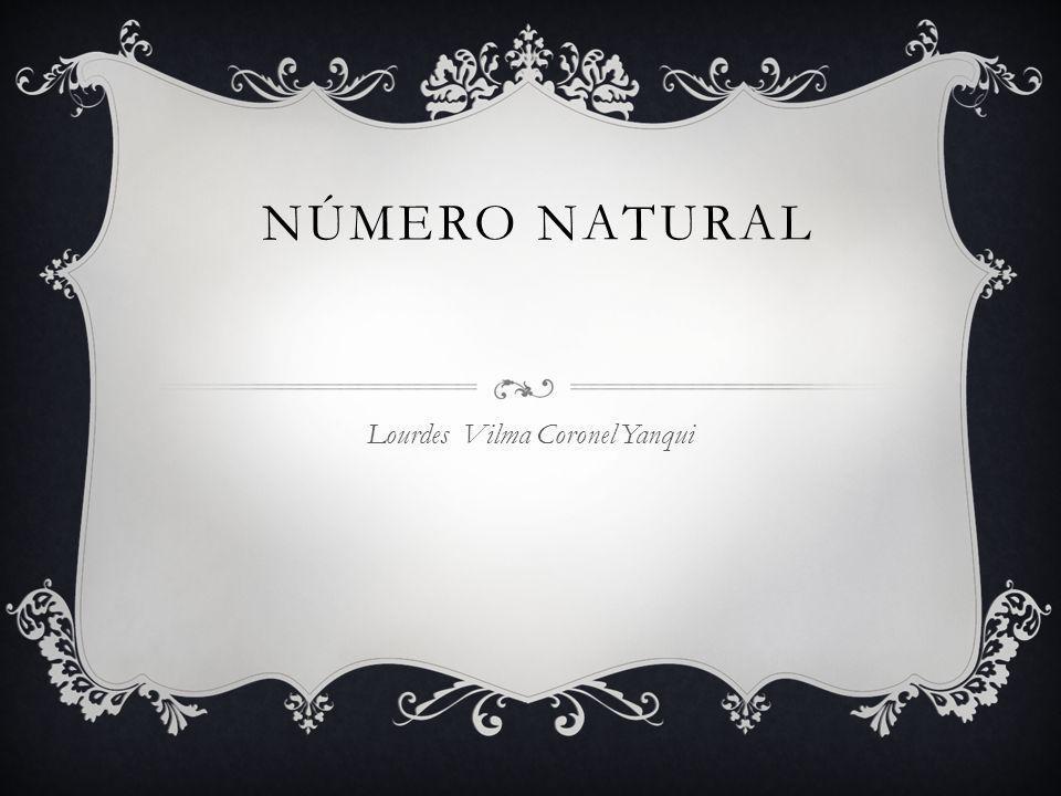 Lourdes Vilma Coronel Yanqui