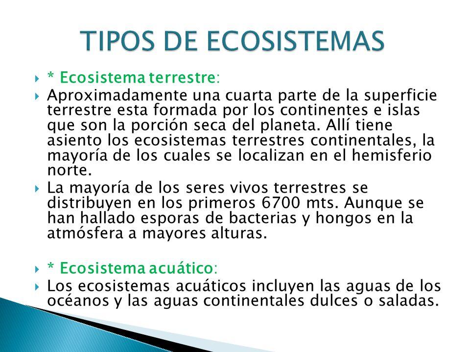 TIPOS DE ECOSISTEMAS * Ecosistema terrestre: