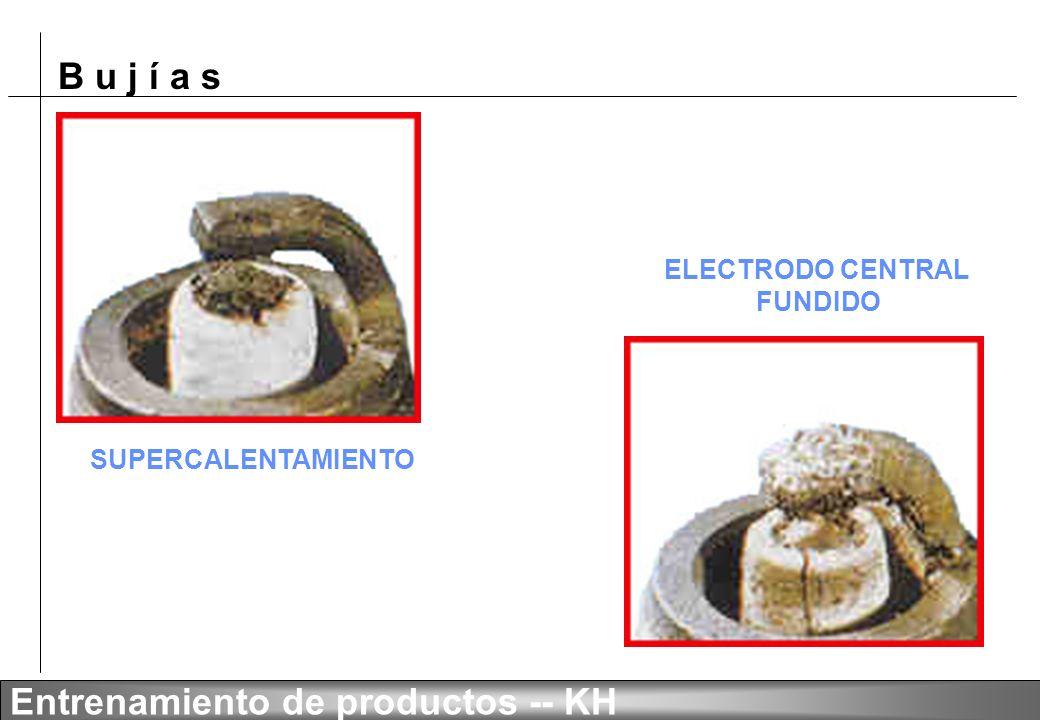 ELECTRODO CENTRAL FUNDIDO