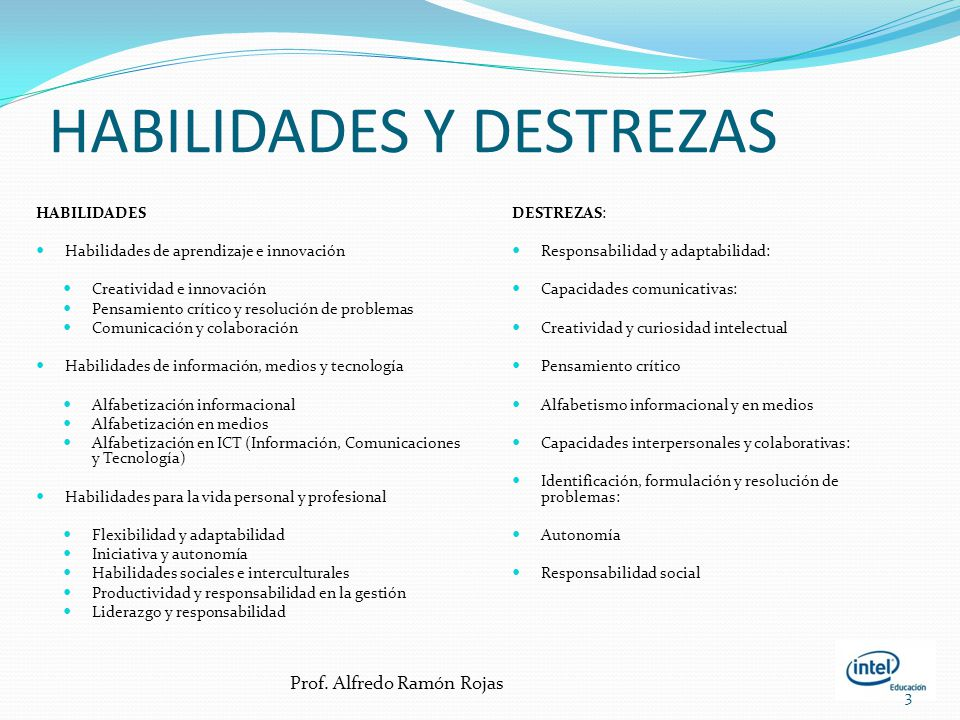 HABILIDADES Y DESTREZAS