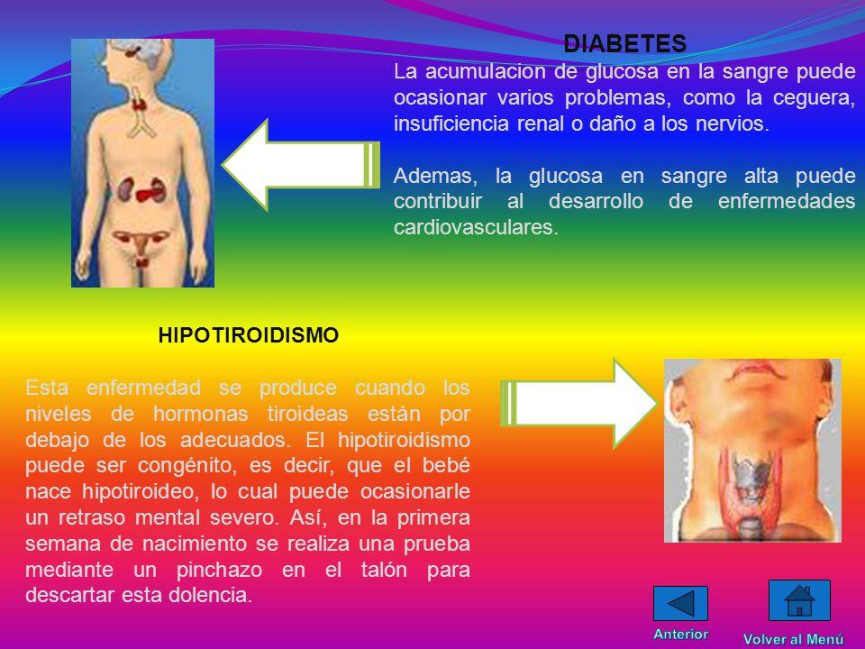 DIABETES La acumulacion de glucosa en la sangre puede ocasionar varios problemas, como la ceguera, insuficiencia renal o daño a los nervios.