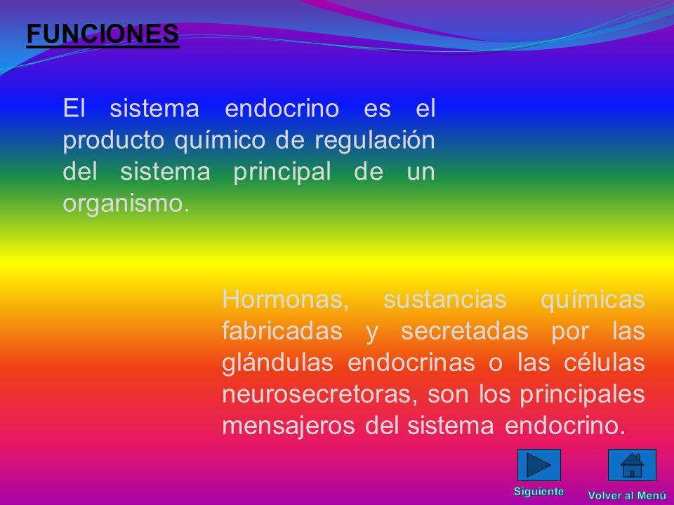 FUNCIONES El sistema endocrino es el producto químico de regulación del sistema principal de un organismo.