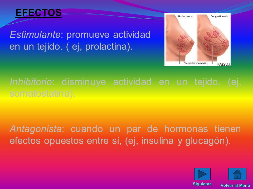 Estimulante: promueve actividad en un tejido. ( ej, prolactina).
