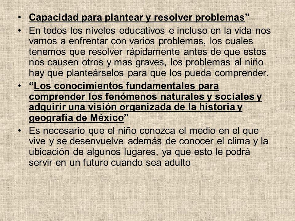 Capacidad para plantear y resolver problemas