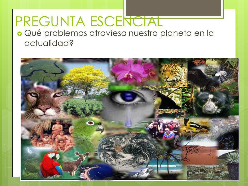 PREGUNTA ESCENCIAL Qué problemas atraviesa nuestro planeta en la actualidad