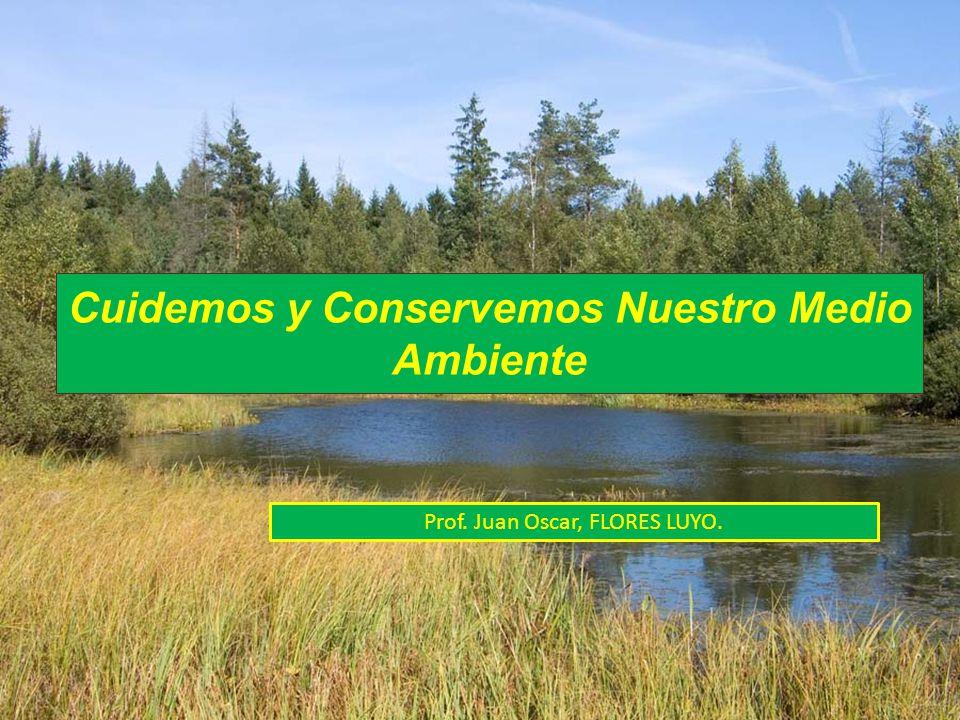 Cuidemos y Conservemos Nuestro Medio Ambiente