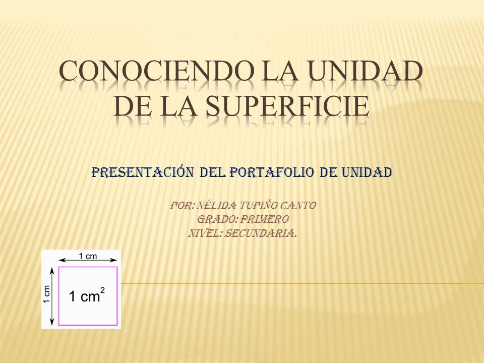 CONOCIENDO LA UNIDAD DE LA SUPERFICIE