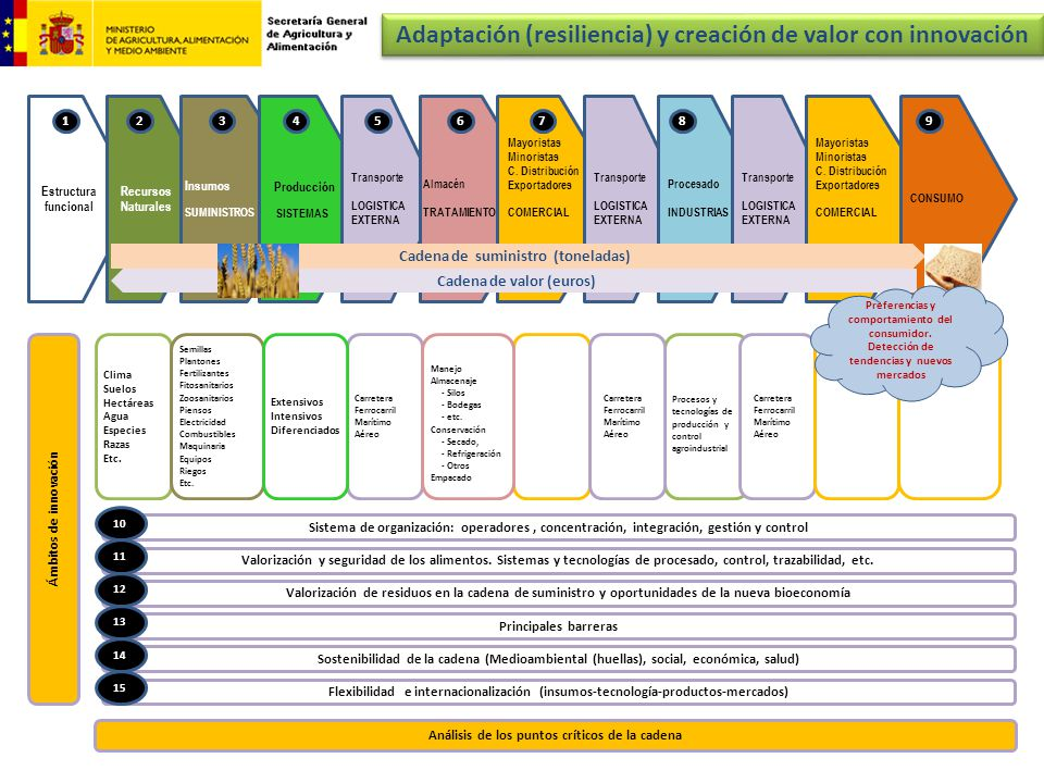 Adaptación (resiliencia) y creación de valor con innovación
