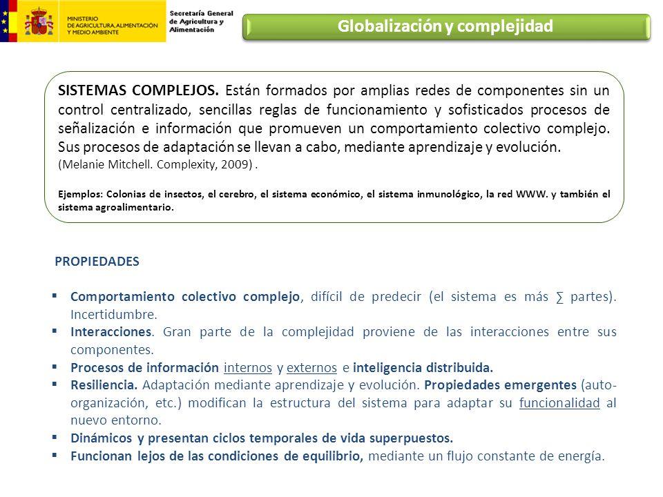 Globalización y complejidad