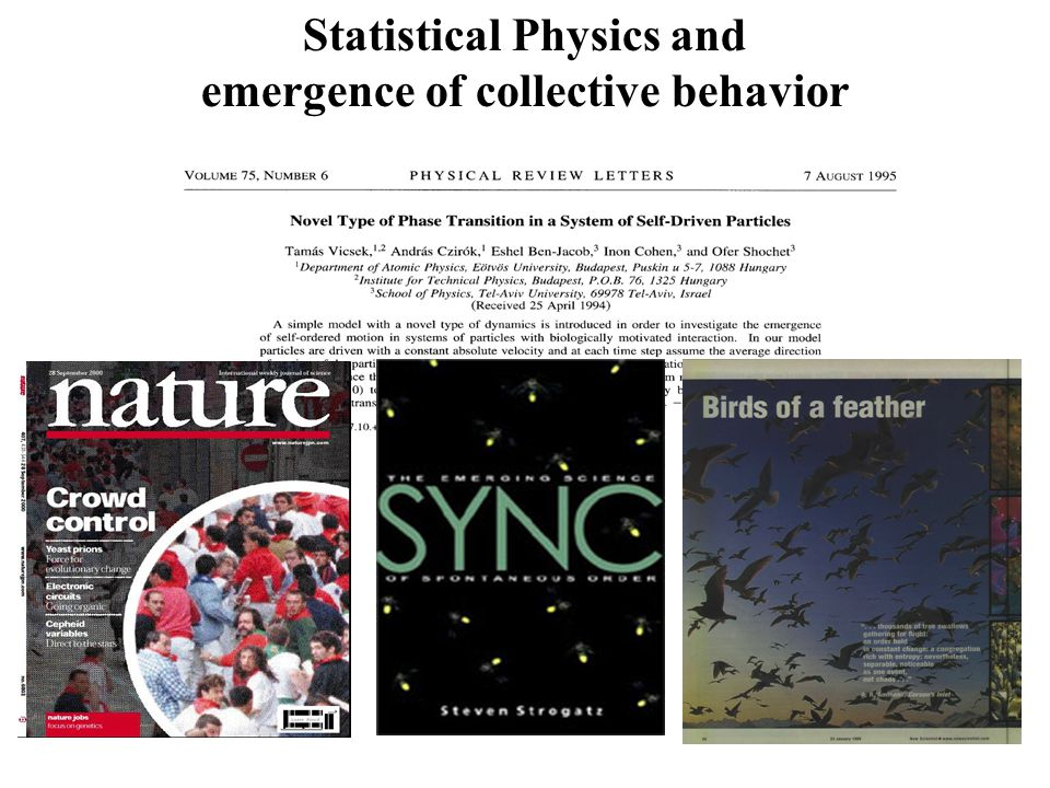 Statistical Physics and emergence of collective behavior