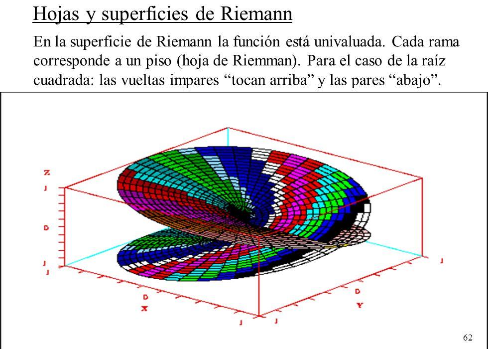 Hojas y superficies de Riemann