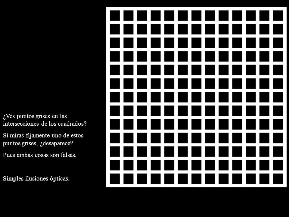 ¿Ves puntos grises en las intersecciones de los cuadrados