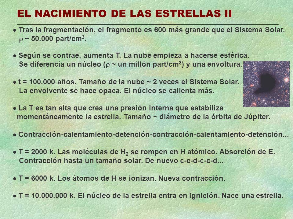 EL NACIMIENTO DE LAS ESTRELLAS II