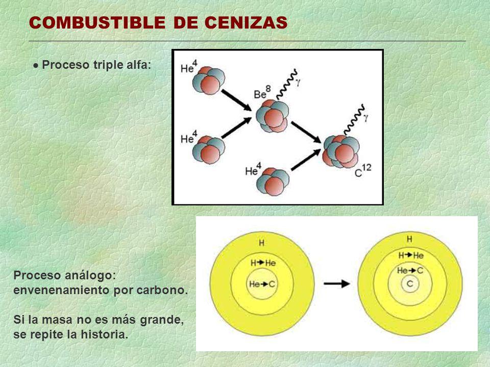 COMBUSTIBLE DE CENIZAS