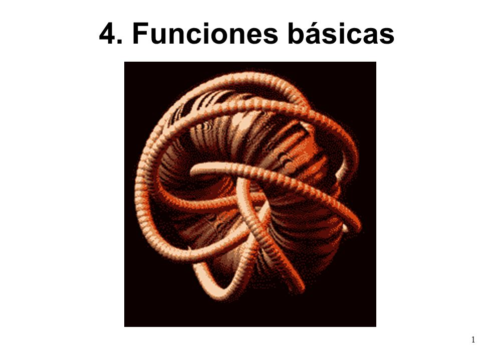 4. Funciones básicas