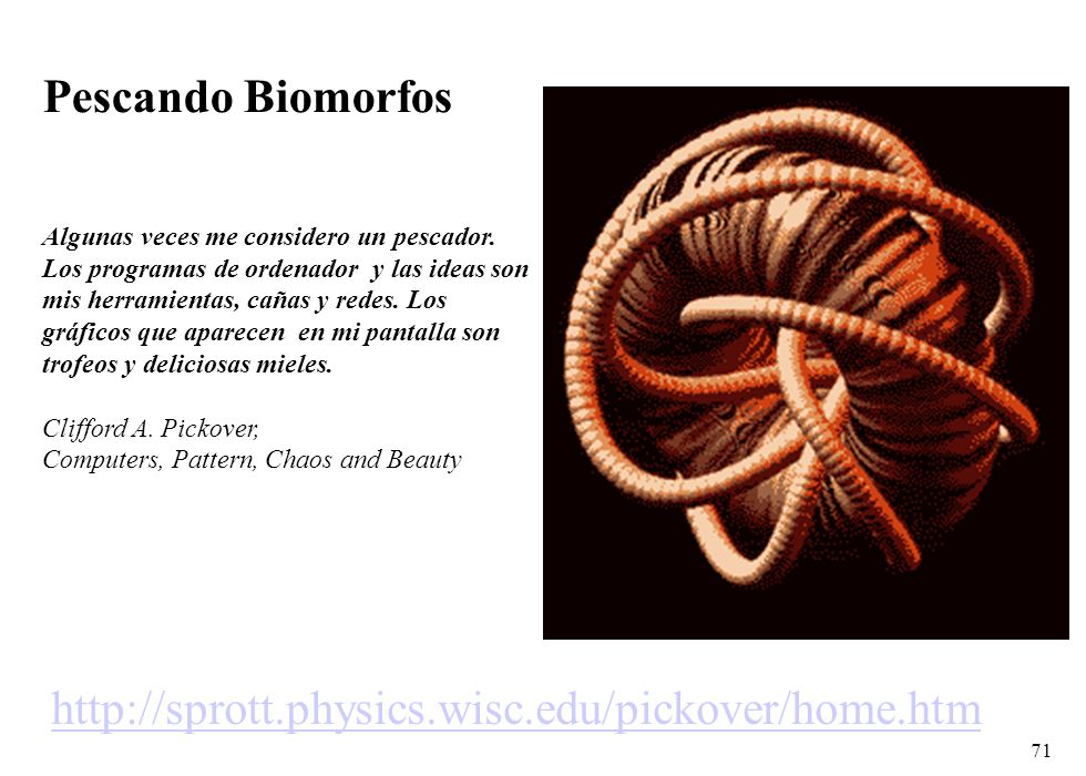 Pescando Biomorfos http://sprott.physics.wisc.edu/pickover/home.htm
