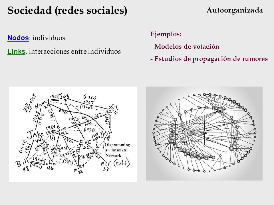 Sociedad (redes sociales)