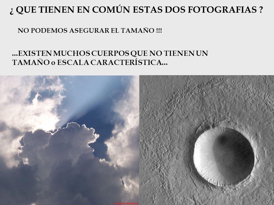 ¿ QUE TIENEN EN COMÚN ESTAS DOS FOTOGRAFIAS