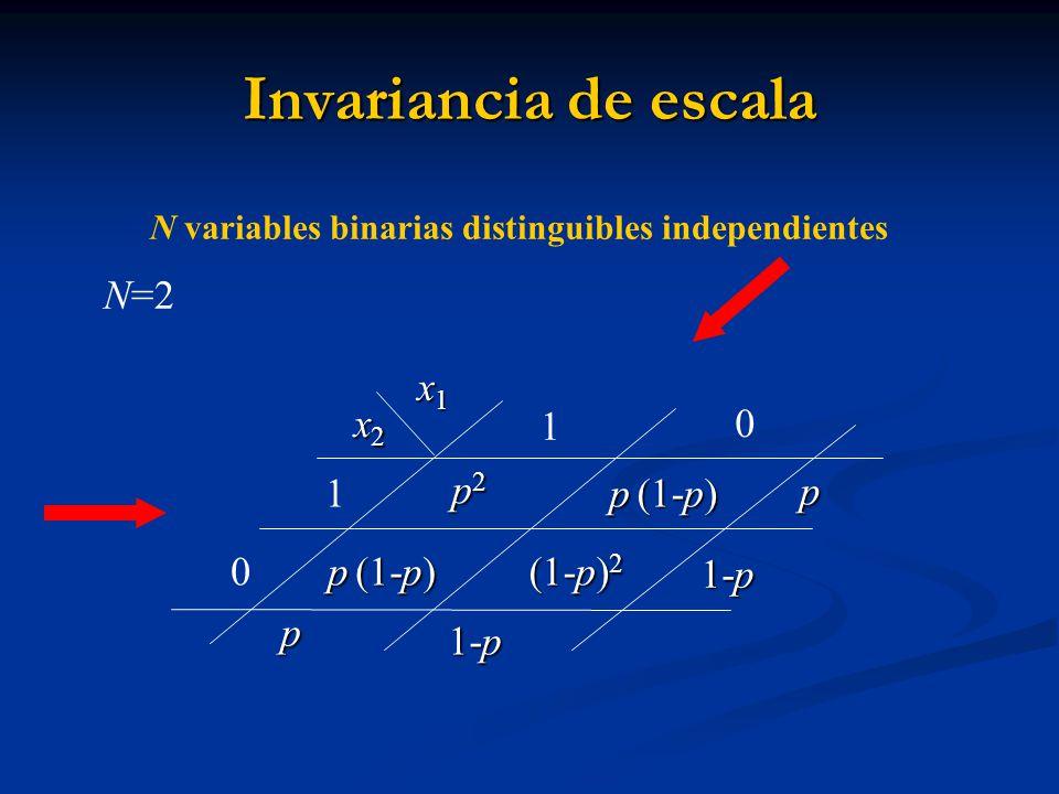 Invariancia de escala N=2 x1 x2 1 1 p2 p (1-p) p p (1-p) (1-p)2 1-p p