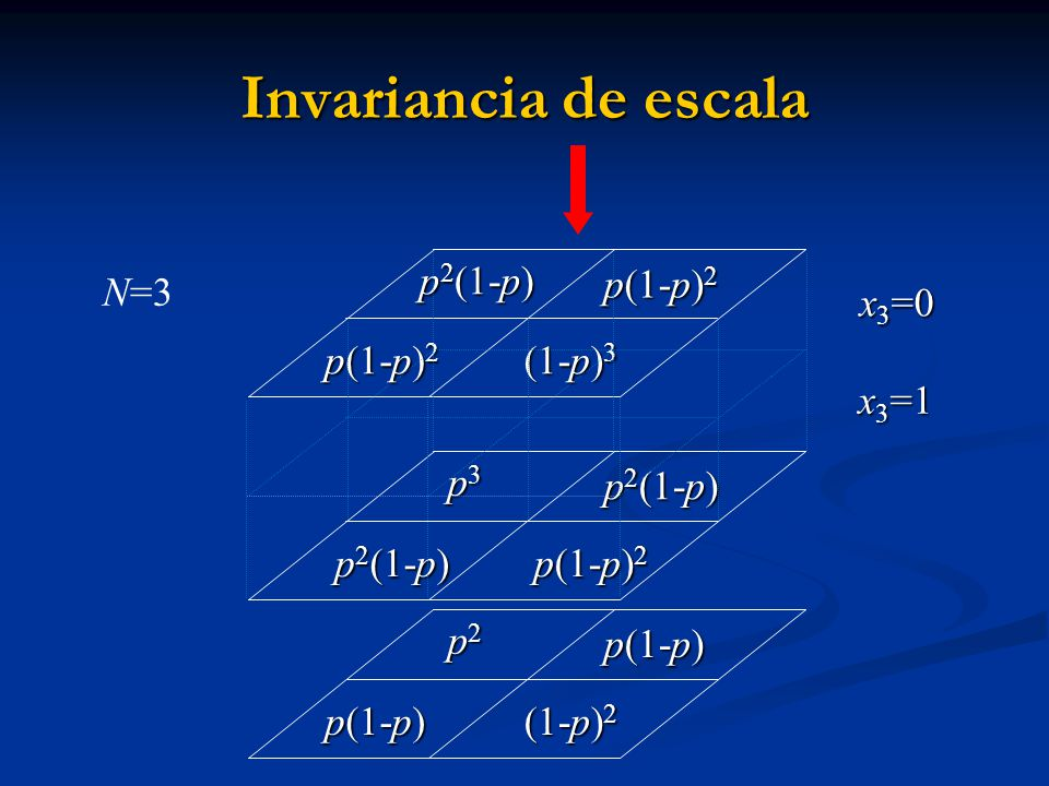 Invariancia de escala p2(1-p) p(1-p)2 N=3 x3=0 (1-p)3 x3=1 p3 p2(1-p)