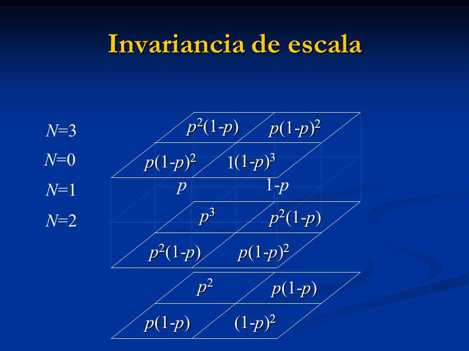 Invariancia de escala p2(1-p) p(1-p)2 N=3 p 1-p (1-p)3 N=1 N=2 p2(1-p)