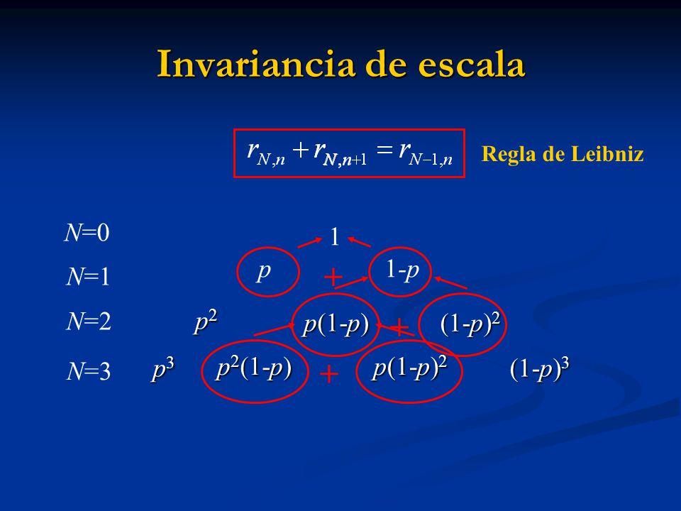 Invariancia de escala + + + p 1-p N=1 N=2 p2 p(1-p) (1-p)2 p2(1-p)