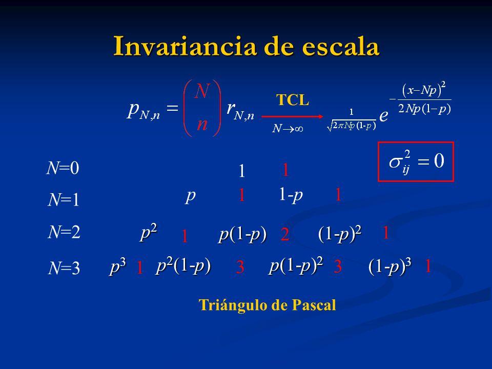 Invariancia de escala p 1-p 1 N=1 N=2 1 1 p2 p(1-p) 1 2 (1-p)2 1 N=3