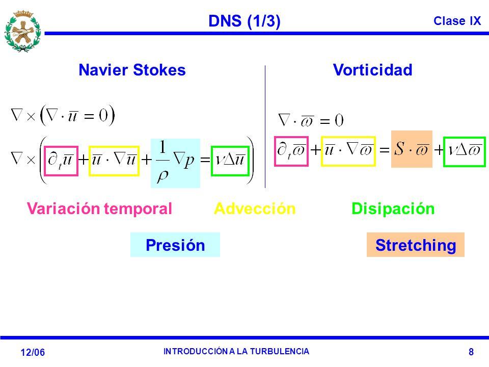 DNS (1/3) Navier Stokes Vorticidad Stretching Variación temporal Advección Presión Disipación