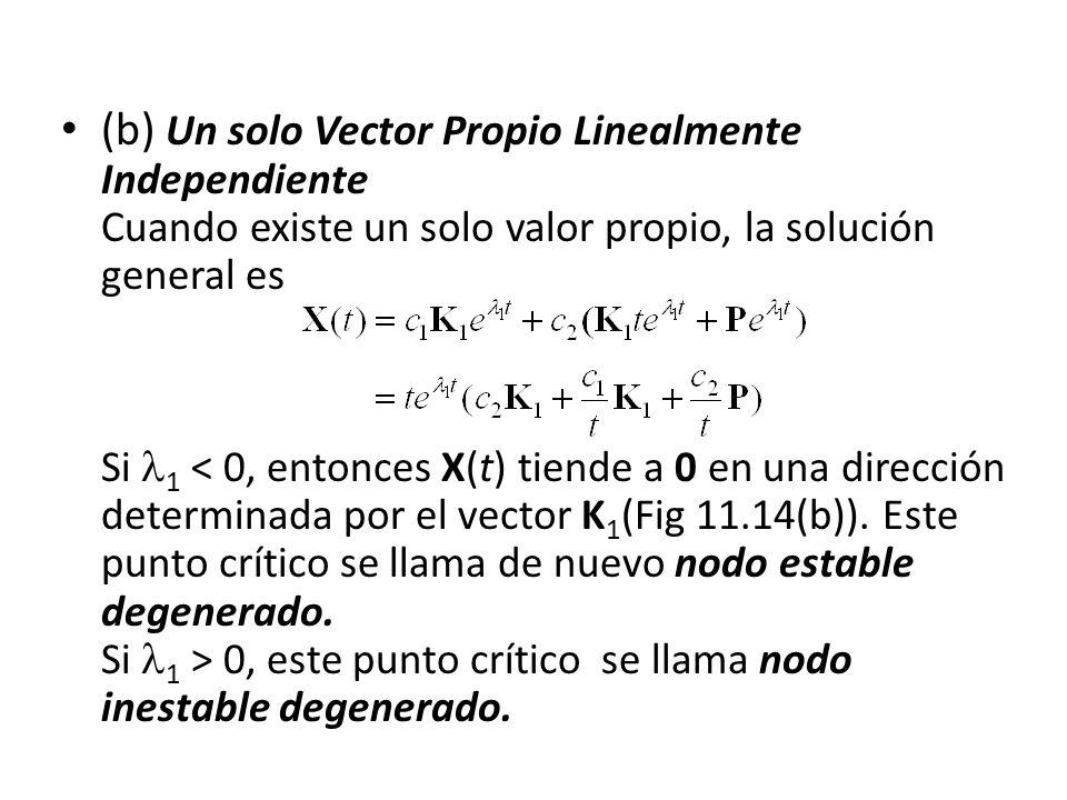 (b) Un solo Vector Propio Linealmente Independiente Cuando existe un solo valor propio, la solución general es Si 1 < 0, entonces X(t) tiende a 0 en una dirección determinada por el vector K1(Fig 11.14(b)).
