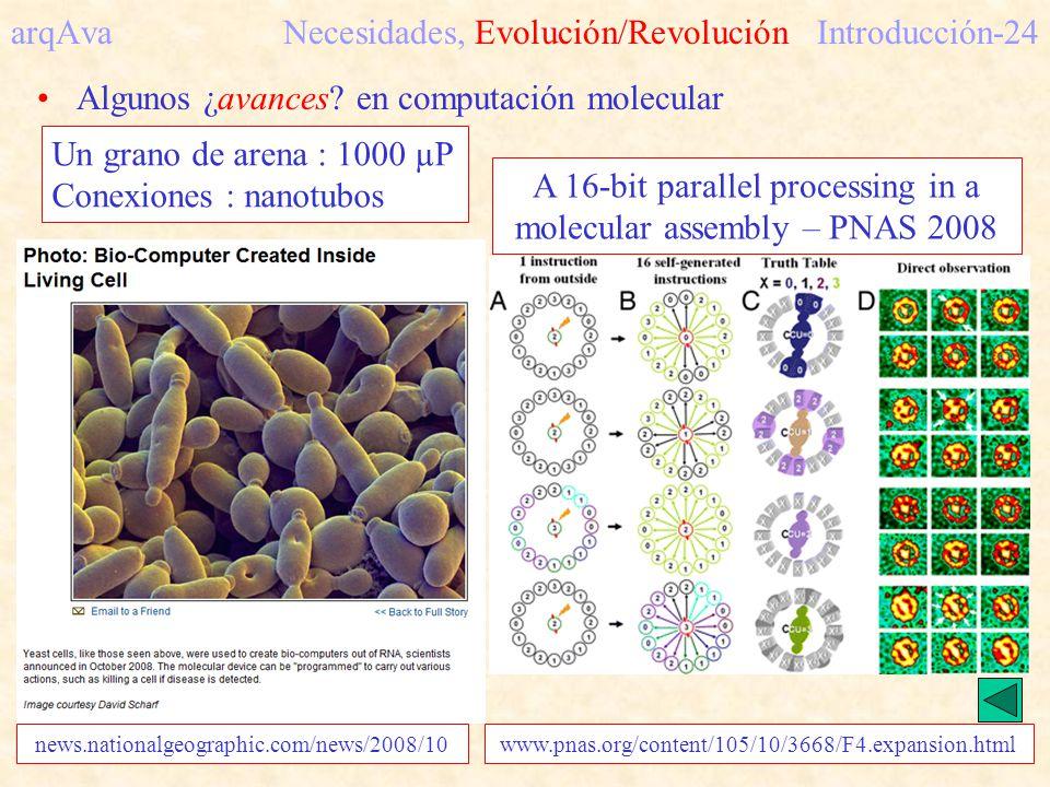 arqAva Necesidades, Evolución/Revolución Introducción-24