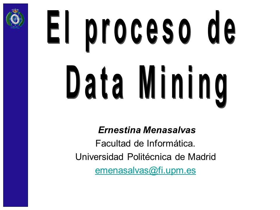 El proceso de Data Mining Ernestina Menasalvas