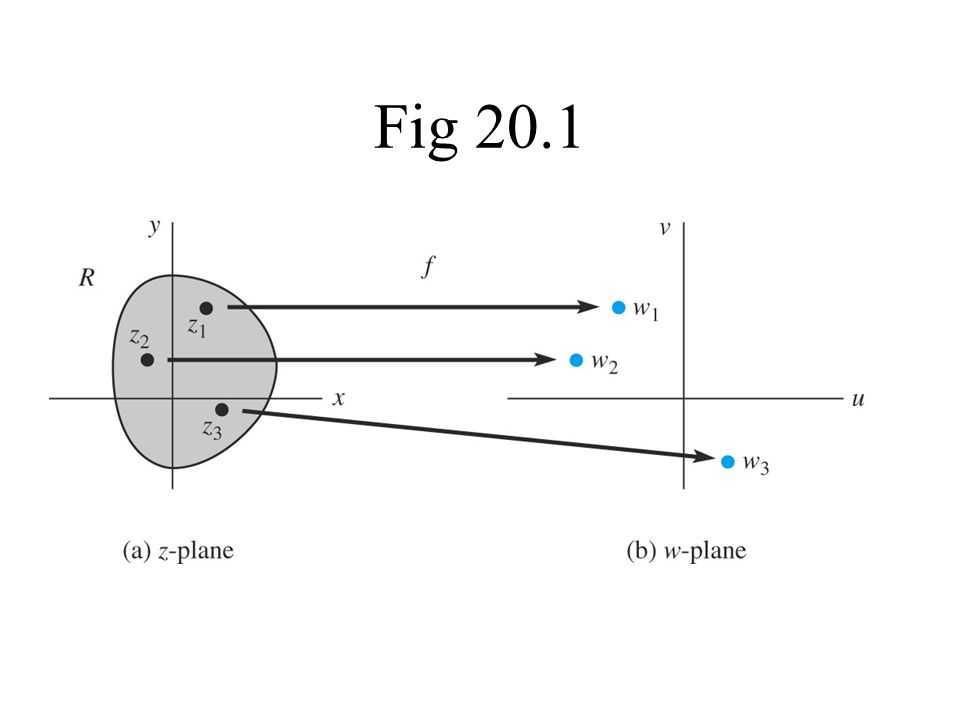 Fig 20.1