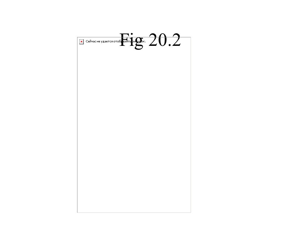 Fig 20.2