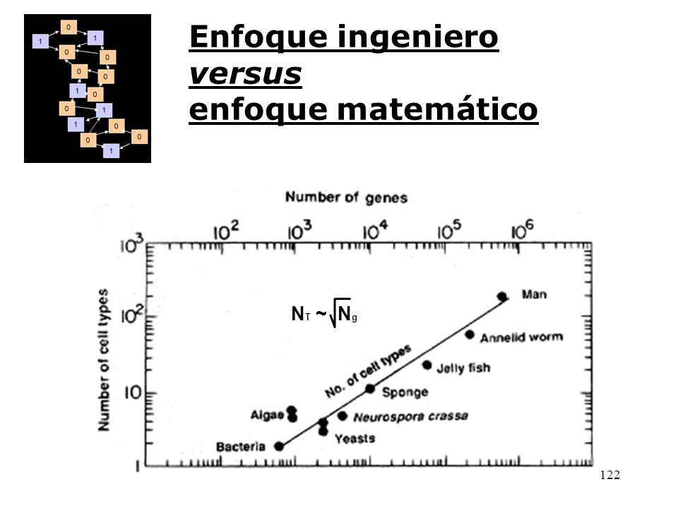 Enfoque ingeniero versus enfoque matemático NT ~ Ng
