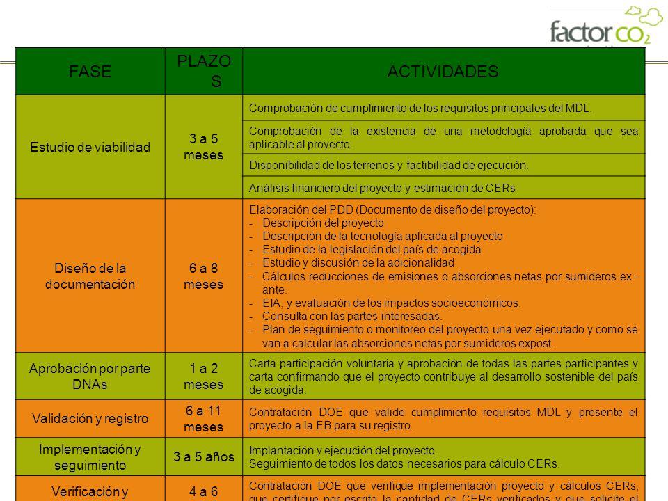 FASE PLAZOS ACTIVIDADES Estudio de viabilidad 3 a 5 meses
