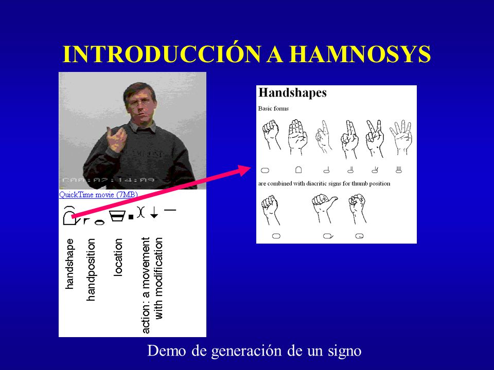 INTRODUCCIÓN A HAMNOSYS