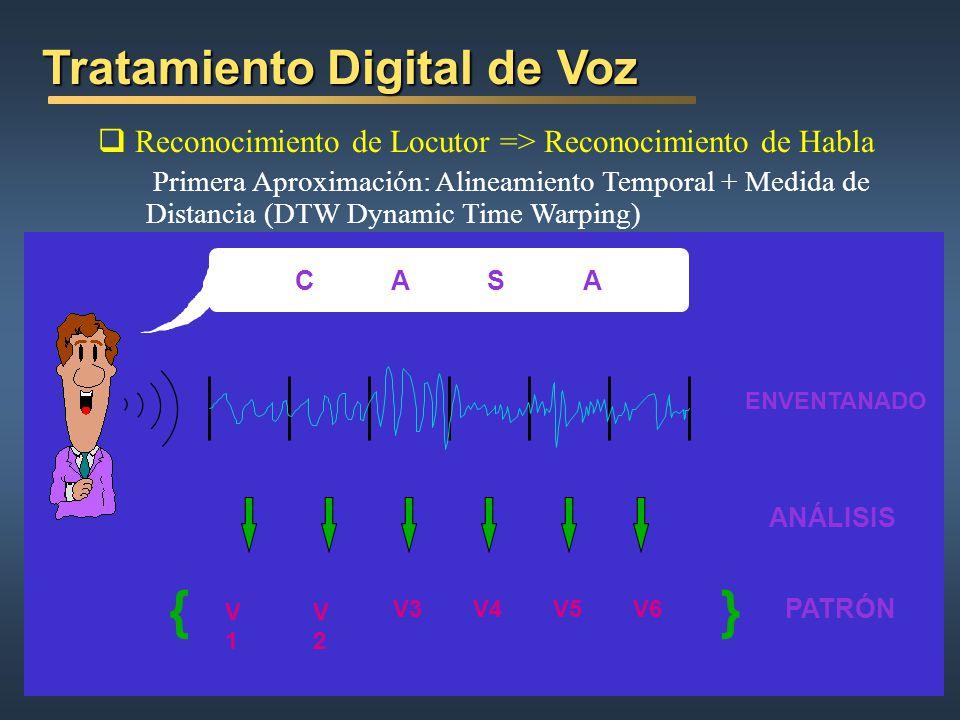 } { Tratamiento Digital de Voz