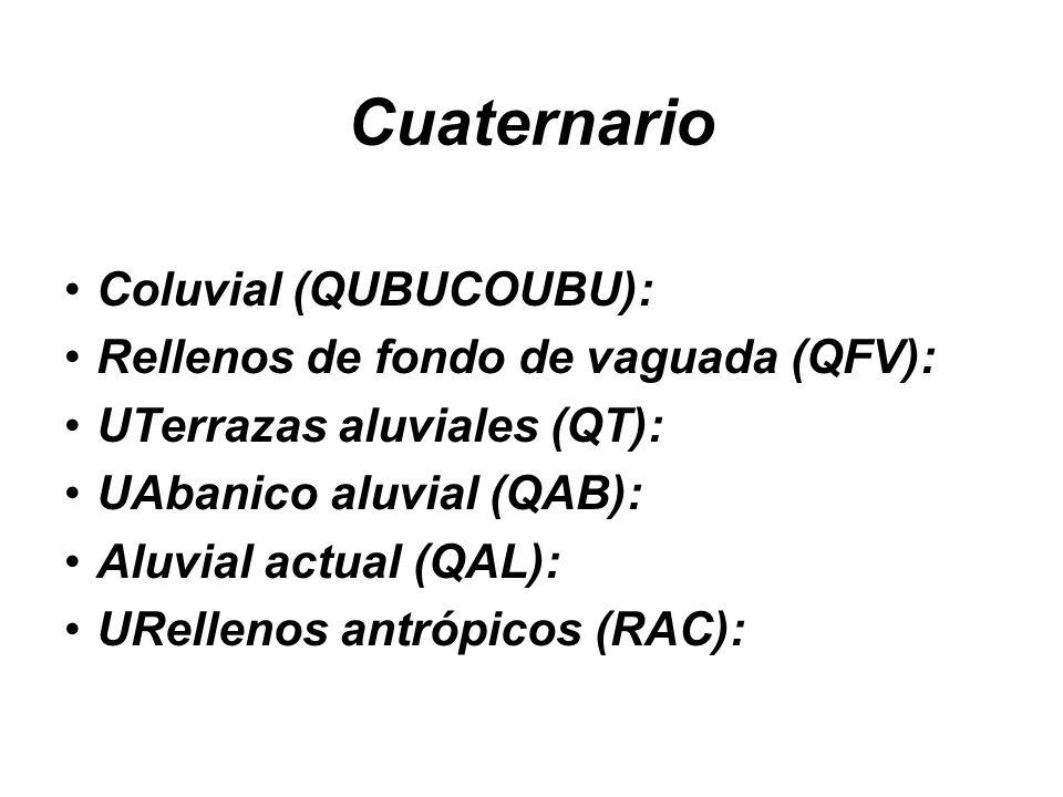 Cuaternario Coluvial (QUBUCOUBU): Rellenos de fondo de vaguada (QFV):