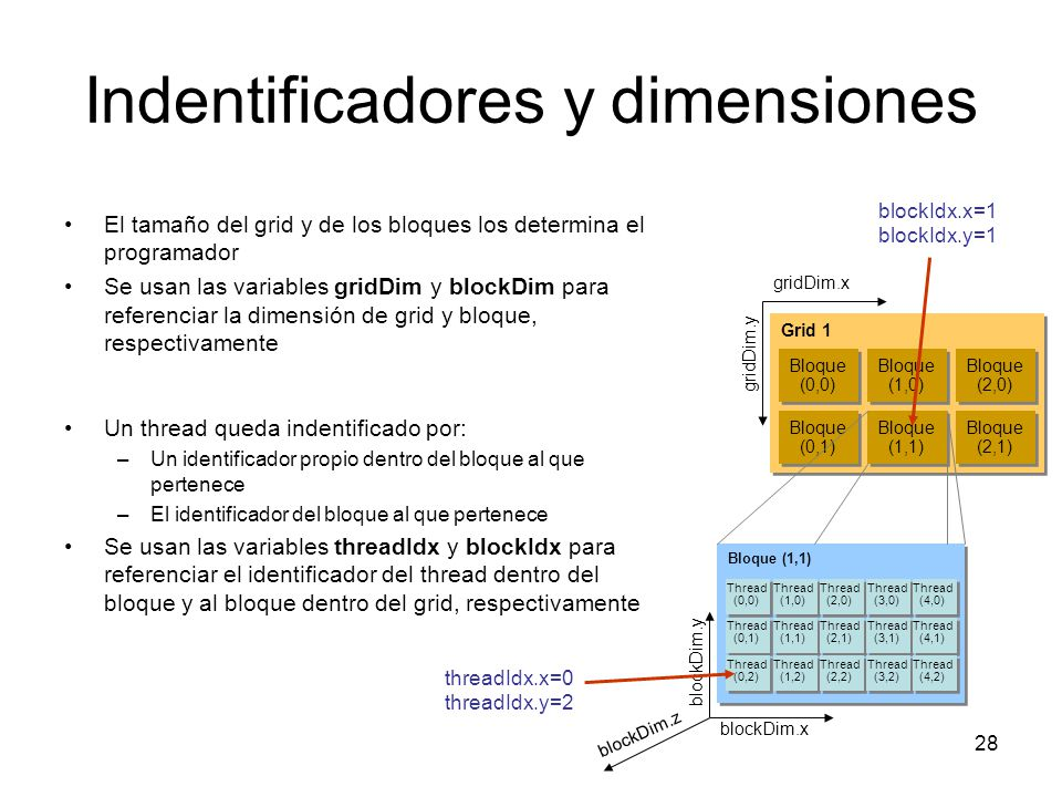 Indentificadores y dimensiones