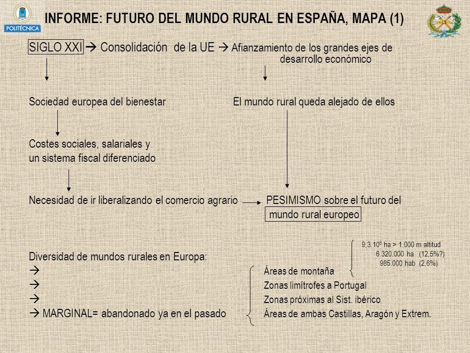INFORME: FUTURO DEL MUNDO RURAL EN ESPAÑA, MAPA (1)